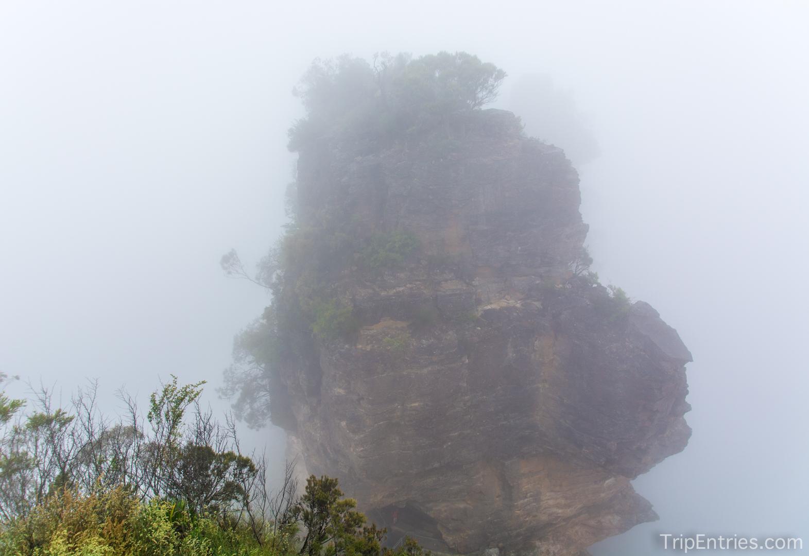 Blue Mountains - туманные Голубые Горы