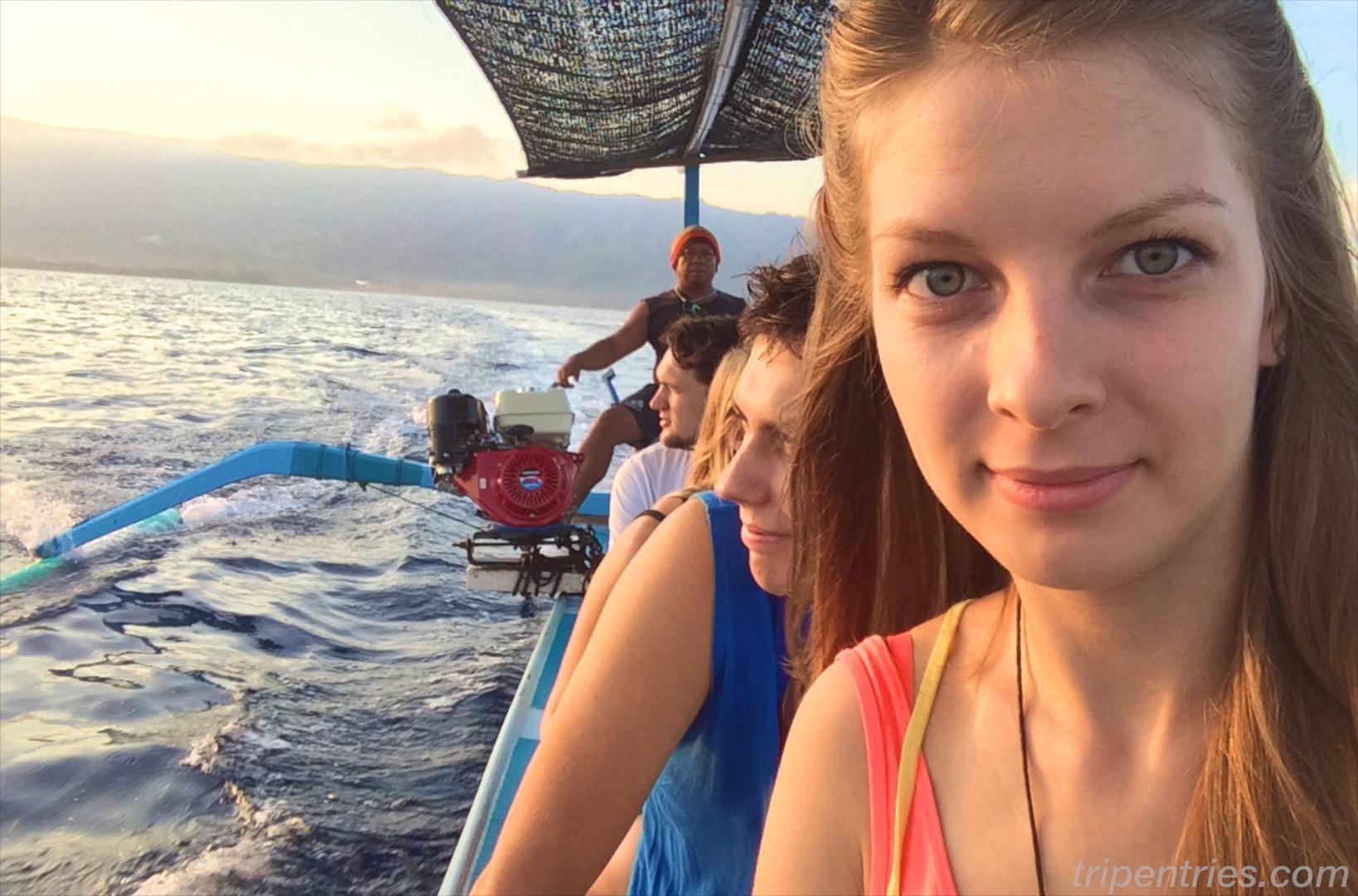 Дельфины и киты в открытом море