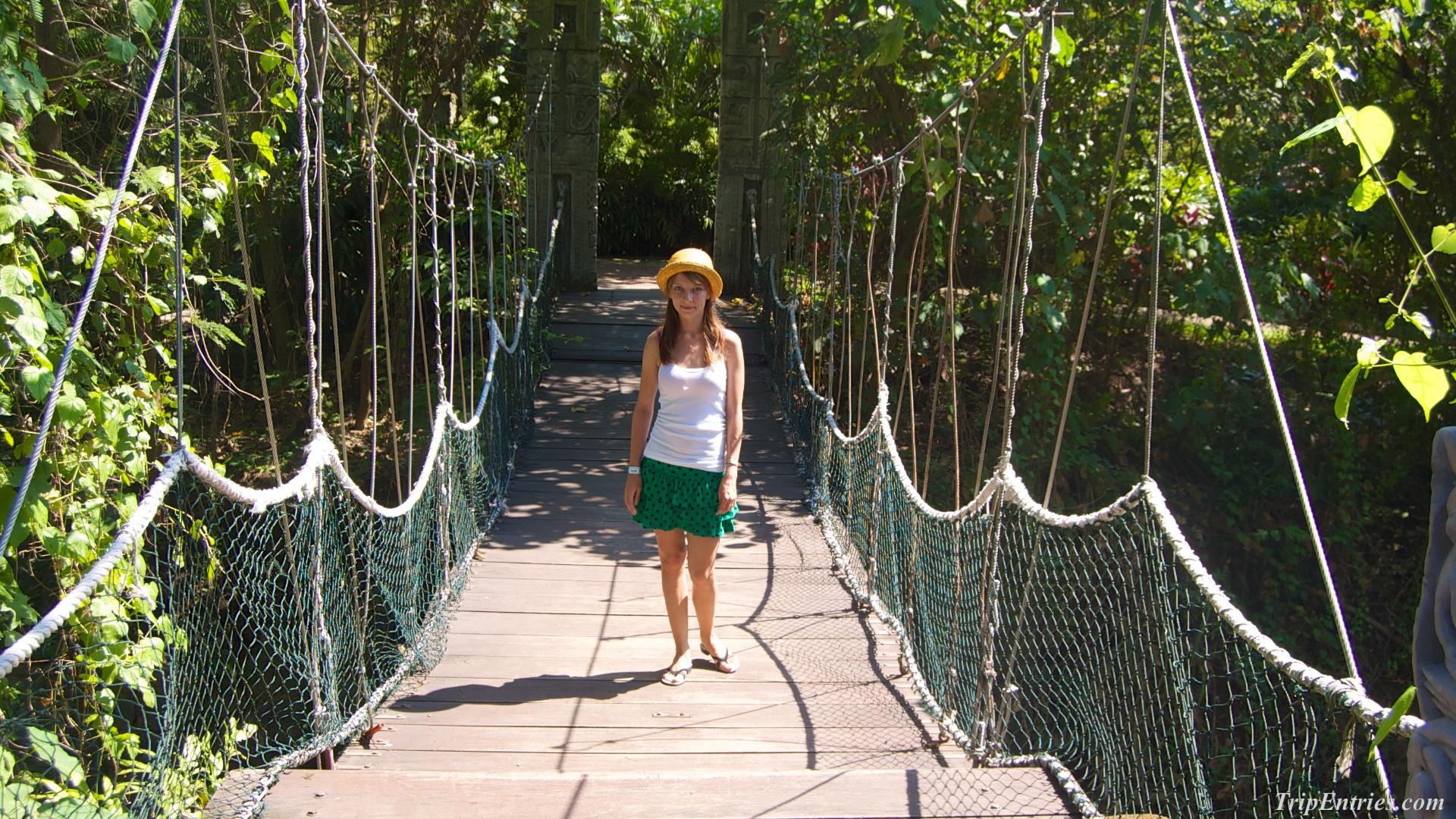 Зоопарк на Бали: Bali Safari & Marine Park