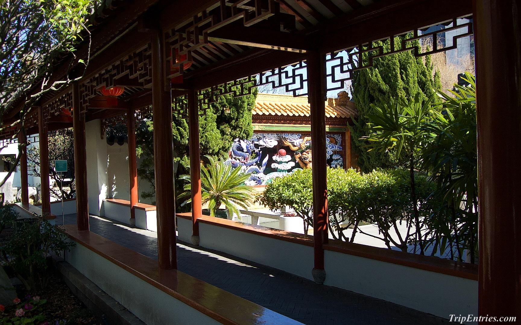 Китайский островок в центре Сиднея - Chinese Garden of friendship