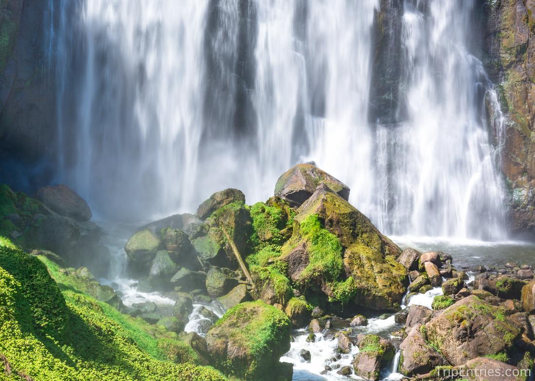 По дороге в New Plymouth: пещеры Waitomo, водопады и птички киви