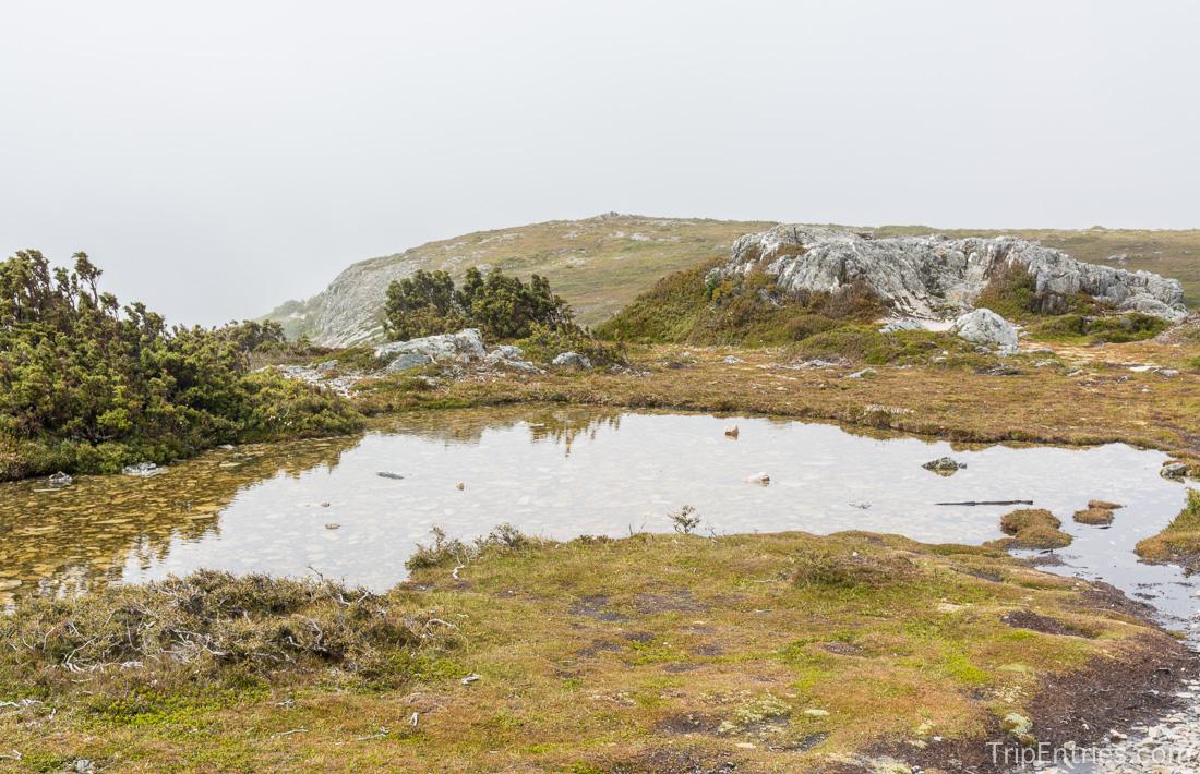 Покорение Cradle Mountain - Summit Track